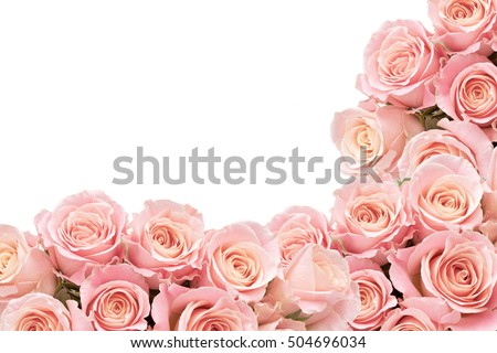 Border of Soft Roses with space for text