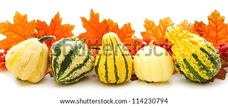 Border or edge of gourds and vibrant autumn leaves over white - stock photo
