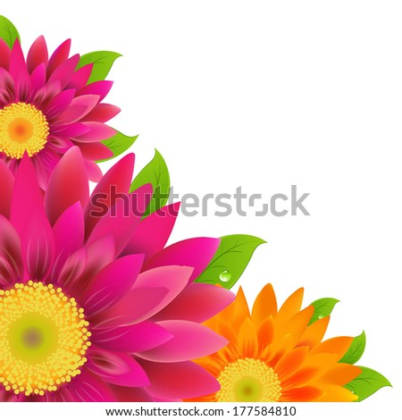 Border With Color Gerbers - stock photo