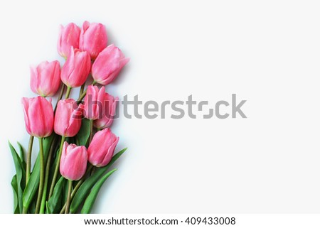 Border with pink tulips on a white background. Tulip flower isolated over white. - stock photo
