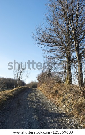 Bore (Pr),Apennines, Italy,  a part of the old Via francigena in the woods