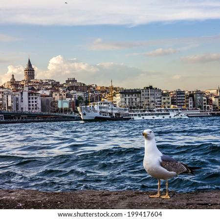 Bosporus seafront, Istanbul, Turkey - stock photo