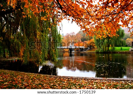 Boston Public Garden - stock photo