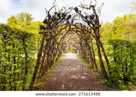 Botanical arc in Bergpark garden public park - stock photo