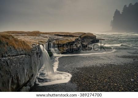 Botanical Beach, Juan de Fuca Trail, Port Renfrew, BC, Vancouver Island Canada, Wild West Coast - stock photo