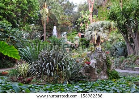 botanical garden La Mortella,Ischia,Italy - stock photo