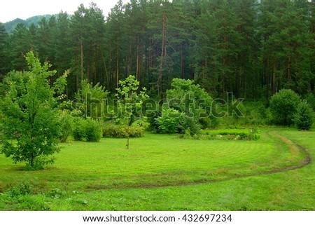 Botanical Garden. Russia, Altai. - stock photo