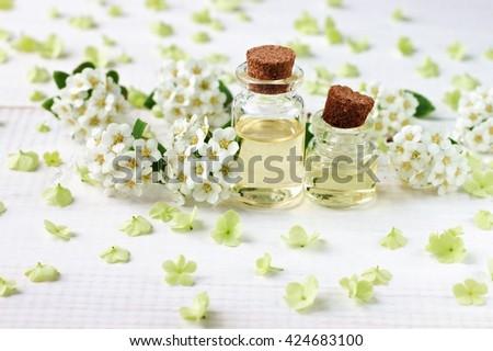 Botanical skincare treatment. Essential oils bottles, flower blossom framed around. Fresh fragrance beauty care. - stock photo