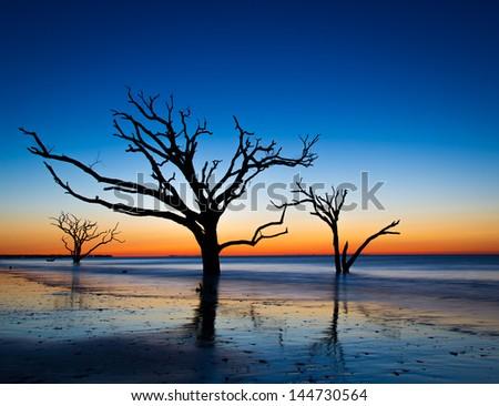 Botany Bay Sunrise at Edisto Island, South Carolina - stock photo