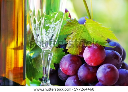 bottle and glass of wine with grapes - stock photo