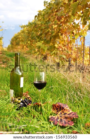 Bottle and wineglass among vineyards in Lavaux region, Switzerland  - stock photo