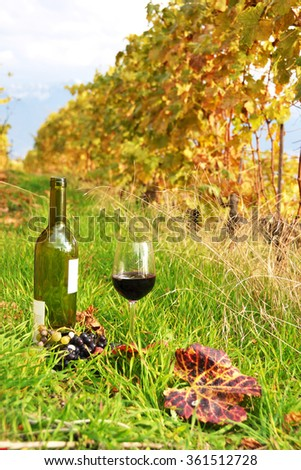 Bottle and wineglass among vineyards in Lavaux region, Switzerland