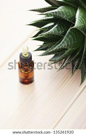 bottle aloe vera essential oil beauty stock photo 135261920 shutterstock. Black Bedroom Furniture Sets. Home Design Ideas