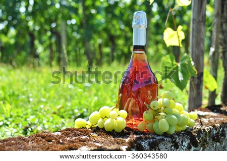 Bottle of champagne and grapes against vineyards - stock photo