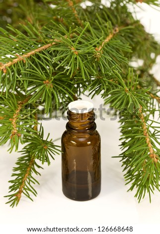 bottle of essential oil of pine and conifer branches - stock photo