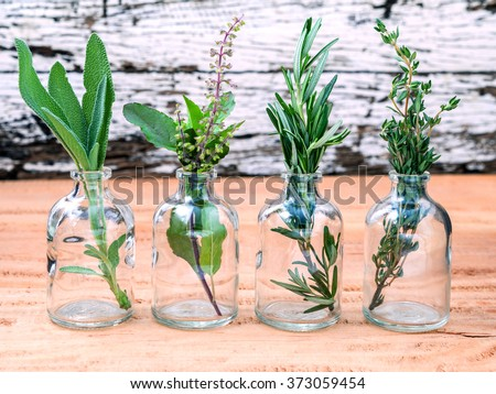 Bottle of essential oil with herbs rosemary, sage,holy basil and thyme  set up on old wooden background . - stock photo