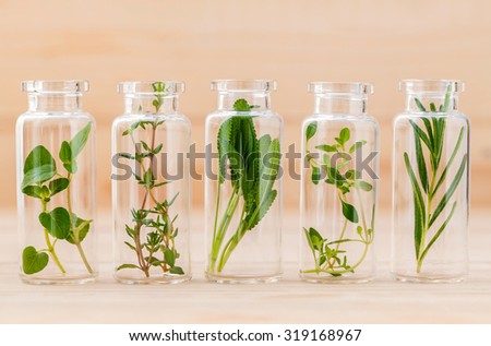 Bottle of herbs lemon thyme ,thyme ,oregano,rosemary and sage leaf on wooden background.