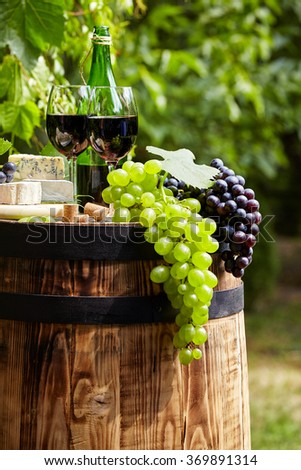 Bottle of red wine with wineglass and grapes in garden - stock photo