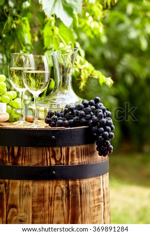 Bottle of white wine with wineglass and grapes in garden - stock photo