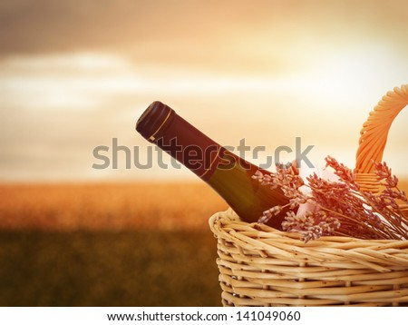 Bottle of wine in basket against beautiful landscape - stock photo