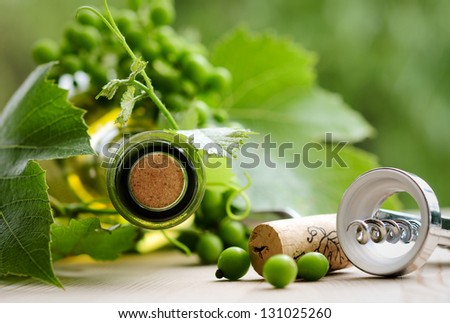 bottle of wine with leaves - stock photo