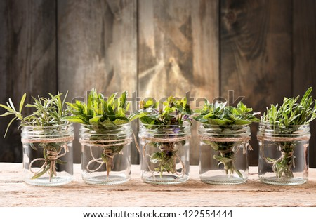 Bottle with herbs on wooden background. Mint, thyme, balm and other medicinal herbs - stock photo