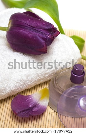 Bottle with perfume and violet tulips