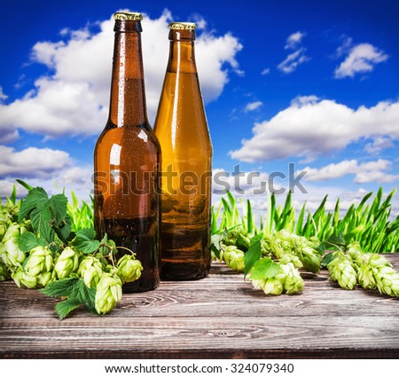 bottles of beer and hops branch on the background of the field with grass - stock photo