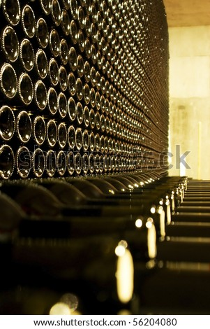 Bottles of red wine wine in the cellar of a wine estate. - stock photo