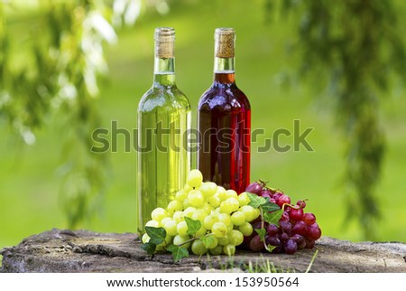 Bottles of wine and grapes in the sun.