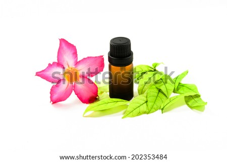 bottles with essence oil and flower isolated on white