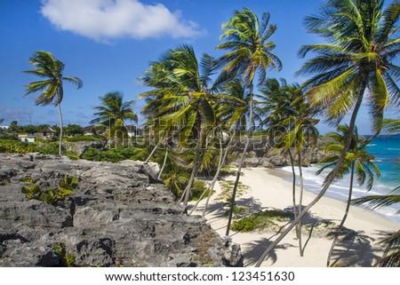 bottom bay beach barbados - stock photo