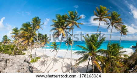Bottom Bay is one of the most beautiful beaches on the Caribbean island of Barbados. It is a tropical paradise with palms hanging over turquoise sea. Wide panoramic photo - stock photo
