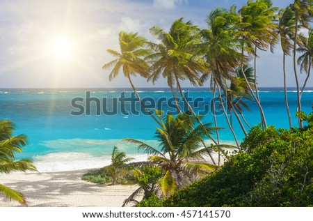 Bottom Bay is one of the most beautiful beaches on the Caribbean island of Barbados. It is a tropical paradise with palms hanging over turquoise sea and a pirate cave - stock photo