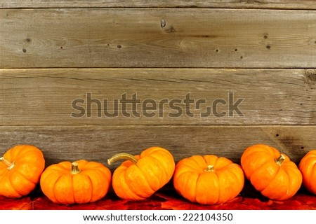 Bottom border of autumn pumpkins and leaves against aged wood                    - stock photo