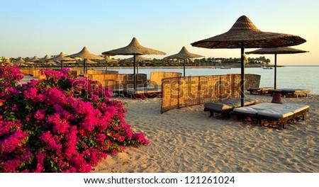 bougainvillea and beach - stock photo