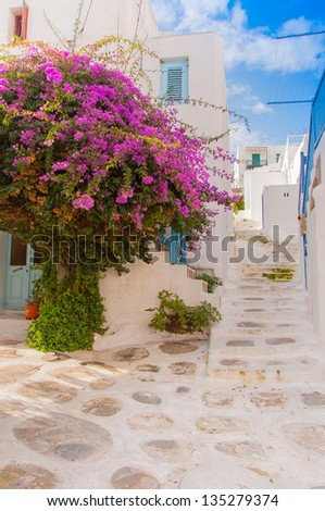 Bougainvillea flowers around the house with a balcony and stairs.Mikonos. - stock photo