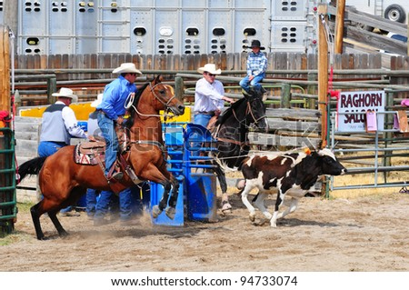 BOULDER - AUGUST 27th: unidentified cowboys in calf roping competition at Jefferson County Fair and Rodeo on august 27, 2011 in Boulder, Montana - stock photo