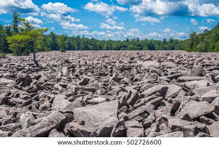 Boulder field in Hickory Run State Park, Pennsylvania