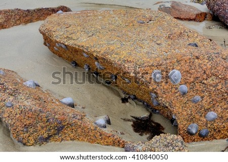 Boulders at low-tide on a Brittany beach