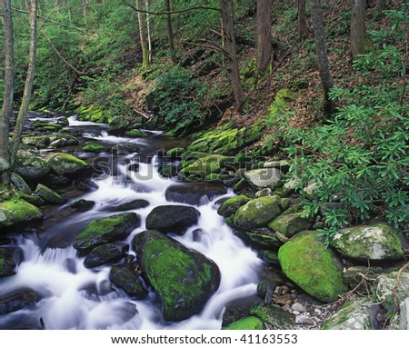 Boulders on the West Prong Little Pigeon River along the Roaring Fork Motor Trail in the Great Smoky Mountains National Park, Tennessee. - stock photo