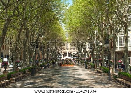 Boulevard Born in Palma de Mallorca, Spain, Europe - stock photo