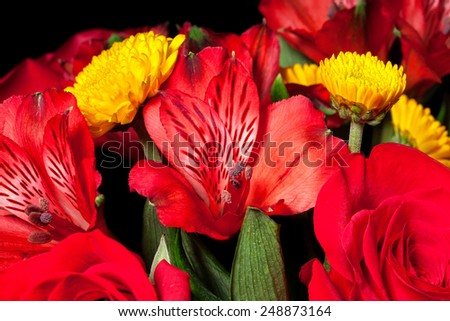 Bouquet assortment of colorful flowers, with small yellow chrysanthemum and red roses  - stock photo