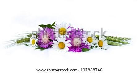 Bouquet chamomiles, wheat  and cornflowers (Centaurea dealbata Willd.)  on white background - stock photo