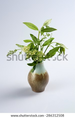 Bouquet flowers dandelion in a vase on a wooden board with napkin on a white background - stock photo