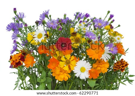 Bouquet from autumn flowers which have lived till October. Isolated on white - stock photo