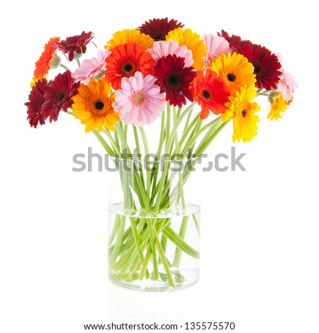 Bouquet Gerber flowers in glass vase isolated over white  backgroud - stock photo