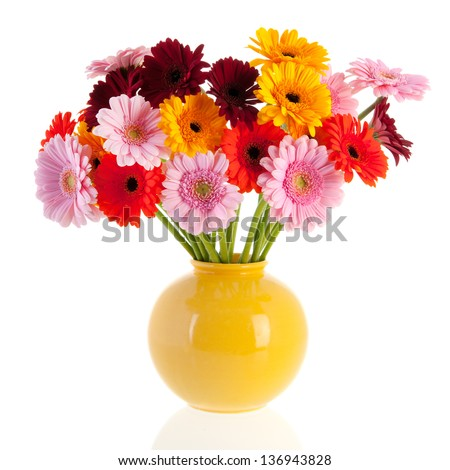 Bouquet Gerber flowers in glass vase isolated over white  background - stock photo