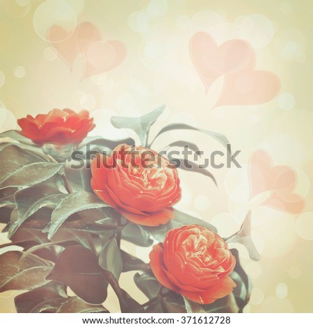 Bouquet of a camellia of flowers on an blurred background with hearts. Card in vintage style by St. Valentine's Day with a place for the text.