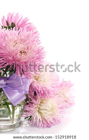 bouquet of asters on a white background - stock photo